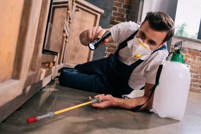 The Regulations of the Pest Control Services